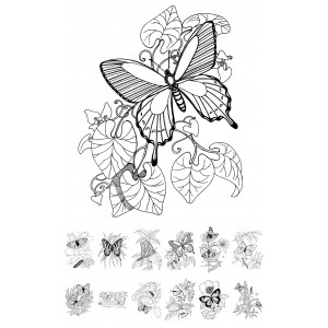 Adult Coloring Book # Buttefly and Flowers