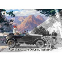 Harry Anderson Classic Cars Painting (24 pages) Grayscale Coloring