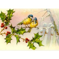 "Birds on Holly 0690 Vintage Birds Waterslide Decals (4pcs 2.5""x3.5""each)"