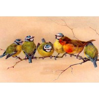 "Birds in a Row 0702 Vintage Birds Waterslide Decals (4pcs 2.5""x3.5""each)"