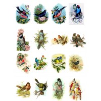 "Beautiful Birds // Decoupage Paper Pack (10sheets A4 / 8""x12"")"