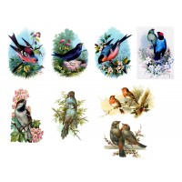 "Stickers (each sticker 2.5""x3.5"", pack 6 pcs) Cute Birds FLONZ Vintage"