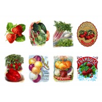 "Stickers (each sticker 2.5""x3.5"", pack 8 pcs) Kitchen Vegeas and Fruits FLONZ Vintage"