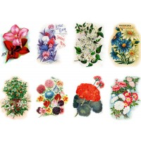 "Stickers (each sticker 2.5""x3.5"", pack 6 pcs) Garden Flowers FLONZ Vintage"