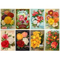 "Stickers (8 pics 2.5""x3.5"" each) Vintage Flowers Garden Seed Pack"