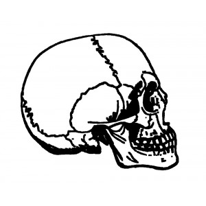 "Skull Engraving [Small size] (0.5"" x 0.8"")"
