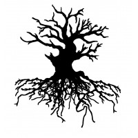 """Old Tree with big Roots (2"""" x 2"""")"""