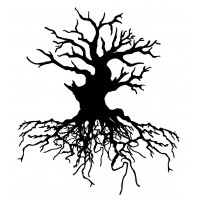 """Old Tree with big Roots (2.5"""" x 2.5"""")"""