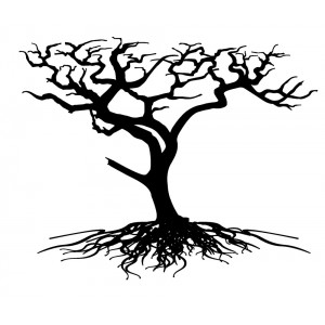 """Desert Tree with big Roots (2.5"""" x 2.5"""")"""