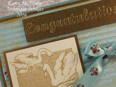 swan congrats 3